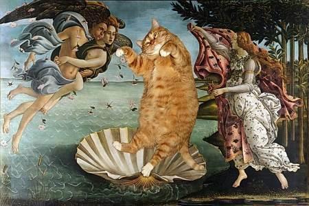 Можно ли давать кошкам макароны?