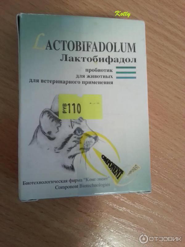 Лактобифадол для собак: инструкция по применению, описание и свойства лактобифадола, цена и отзывы