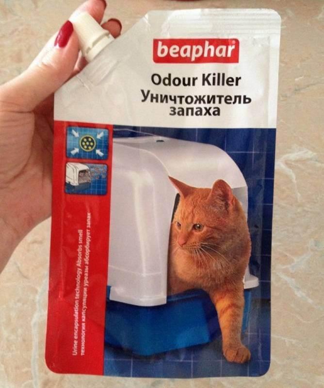 Как правильно использовать лоток с решеткой для кошек, надо ли насыпать наполнитель в кошачий туалет с сеткой?