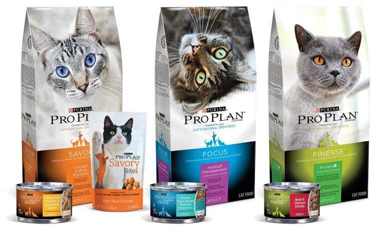 Корм проплан (pro plan) для кошек | состав, цена, отзывы