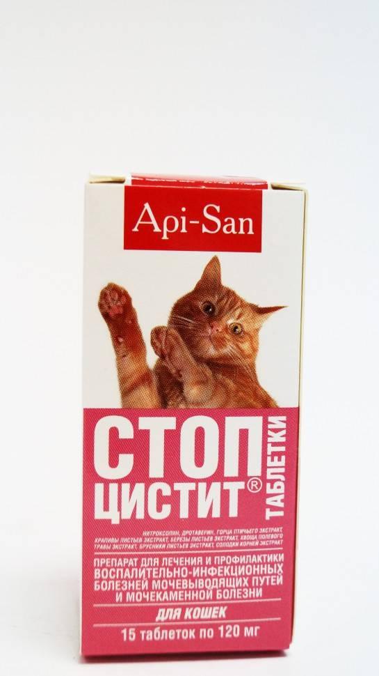 Обзор препарата стоп-цистит для кошек: инструкция по применению, отзывы