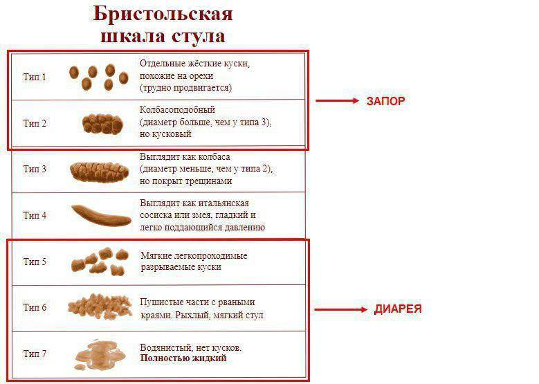 У котенка понос и рвота: причины патологии, лечение (первая помощь, препараты)