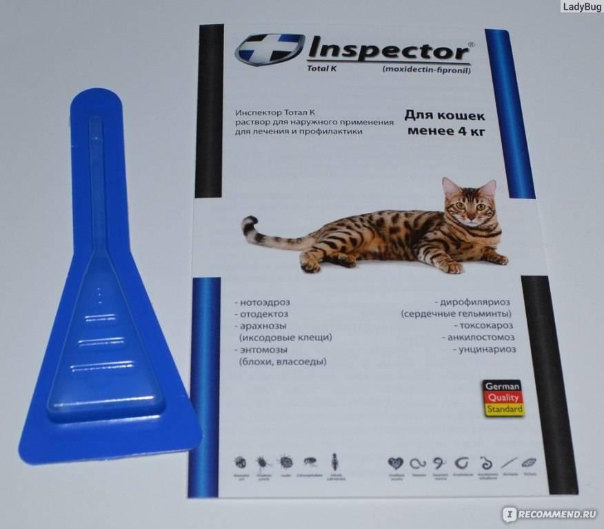 Капли инспектор для кошек: инструкция по применению и отзывы