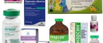 Обзор препарата веракол для кошек: инструкция по применению, отзывы