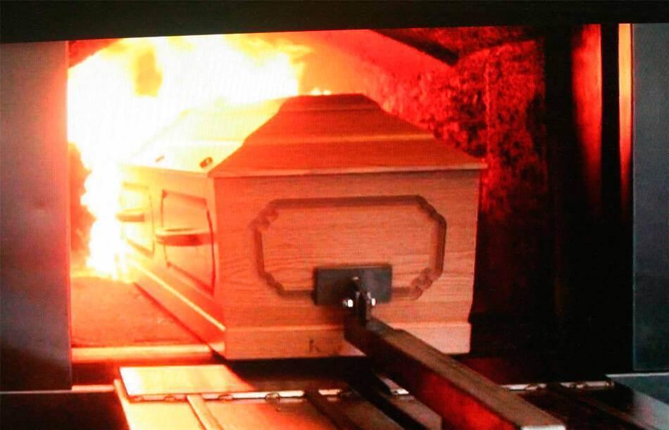 Кремация животных как это происходит?