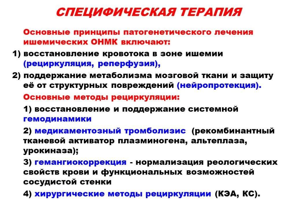 ᐉ инсульт у кошек: симптомы, признаки и методы лечения - kcc-zoo.ru