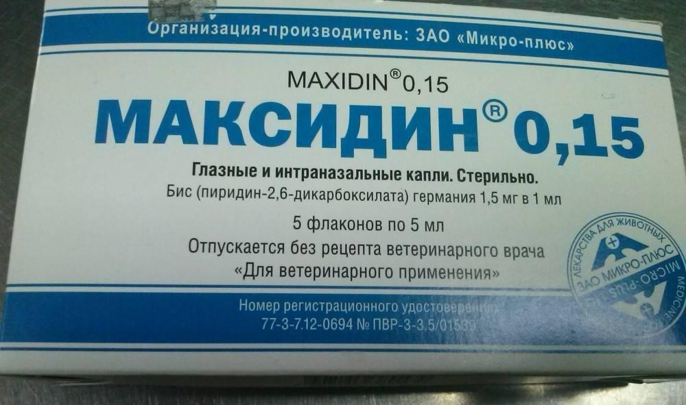 «максидин» (глазные и интраназальные капли, раствор для инъекций): инструкция по применению