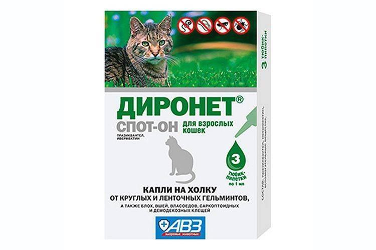 Диронет спот-он для кошек - инструкция, отзывы, цена   сайт «мурло»