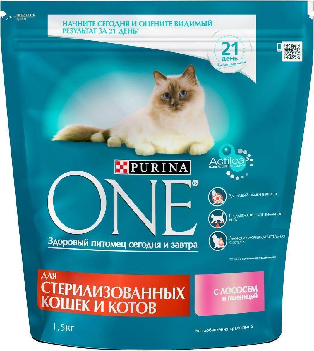 Кормление стерилизованных кошек