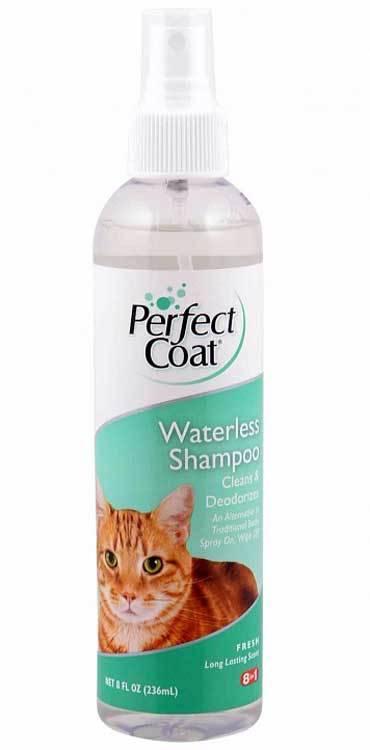 Как подобрать хороший гипоаллергенный шампунь для кошки?