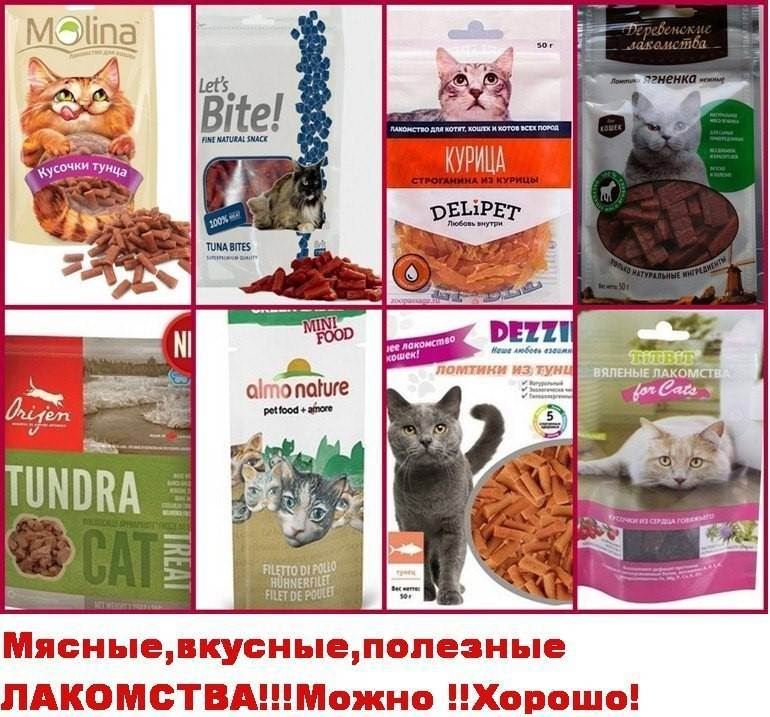 Ещё раз о питании кошек