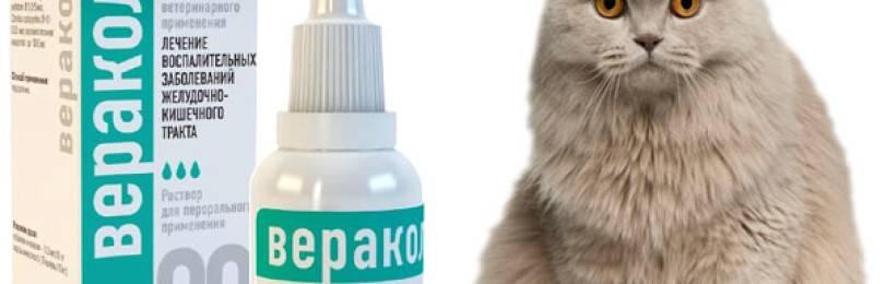 «веракол» для домашних и сельскохозяйственных животных: инструкция по применению