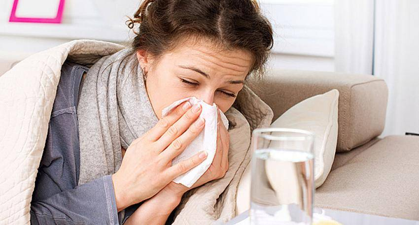 Могут ли коты заразиться от человека простудой: заразен ли человек?