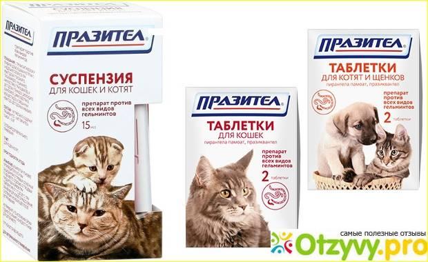 Хелавит для кошек: кормовая добавка с богатым составом
