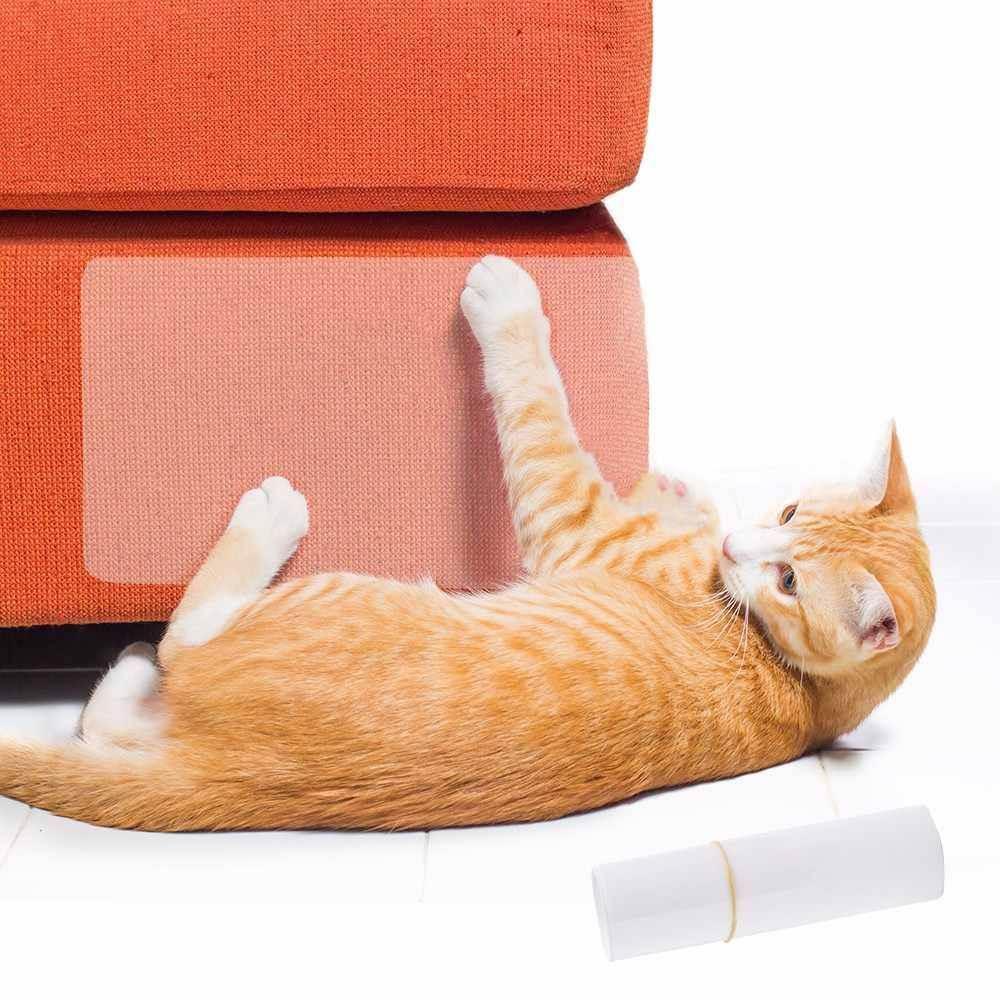 Мягкая мебель и домашний любимец: диван, который ему не по зубам - kotoff - кошачий портал