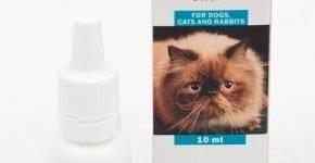 Капли ирис для кошек – здоровье глаз питомца