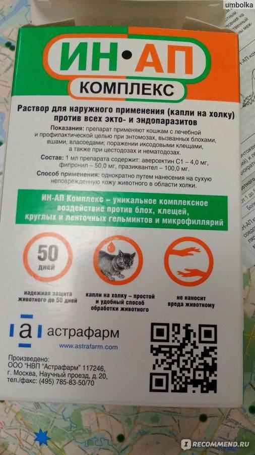 Ин-ап комплекс для кошек: инструкция по применению и отзывы о препарате