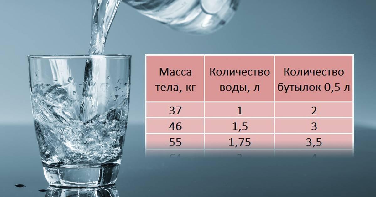 Какой объем воды должна выпивать кошка?