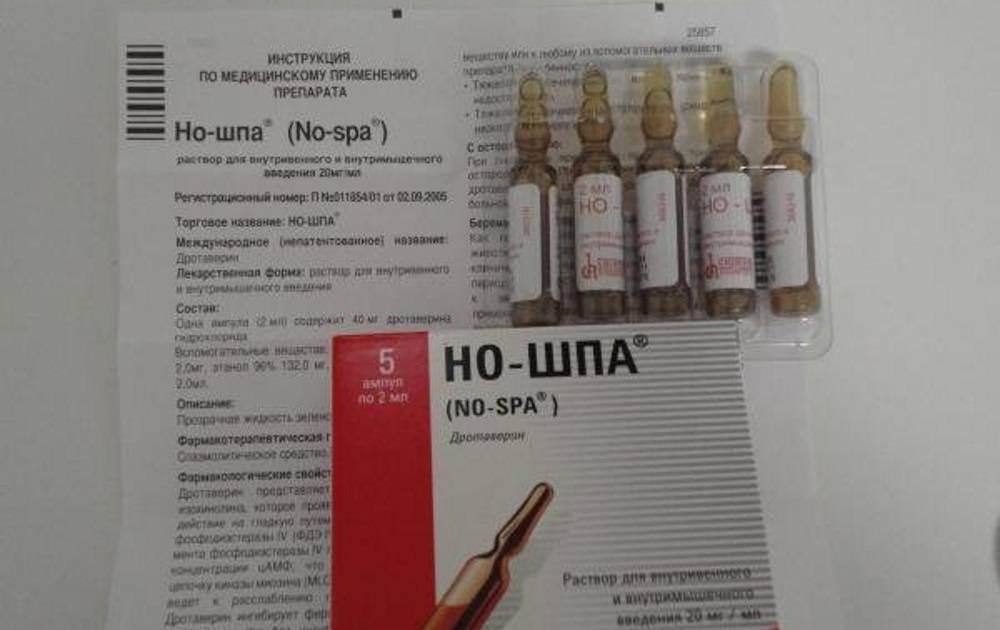 Инструкция по применению препарата но-шпа для собак