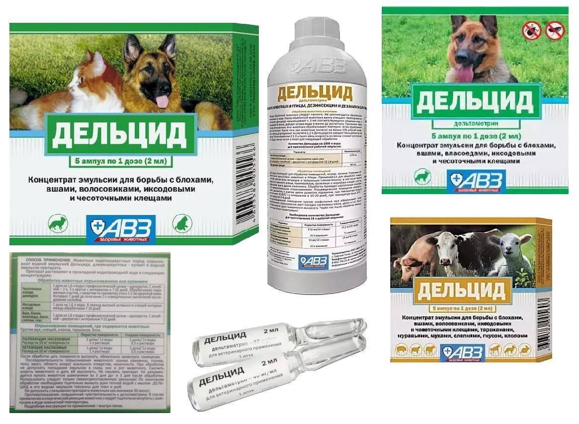 Инструкция по применению препарата энромаг для кошек и других животных