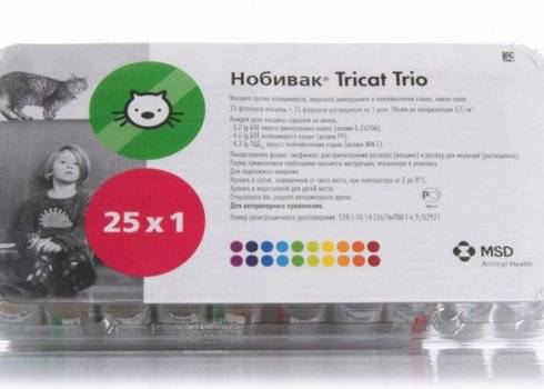 «нобивак tricat trio»: как вакцинировать кошек