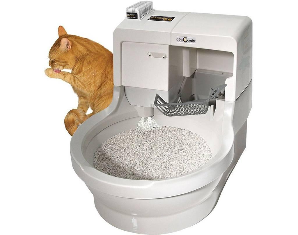Автоматический туалет для кошек и котов: как работает умный кошачий туалет (лоток)