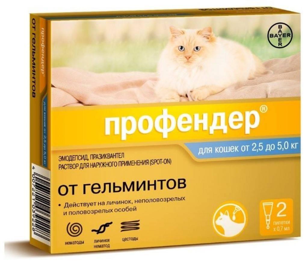 """Инструкция по применению препарата """"профендер"""" для кошек от паразитов"""
