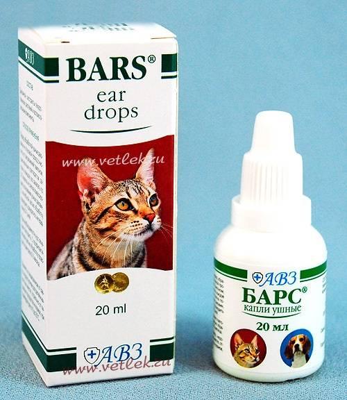 Капли барс от блох для кошек и котят: отзывы о применении