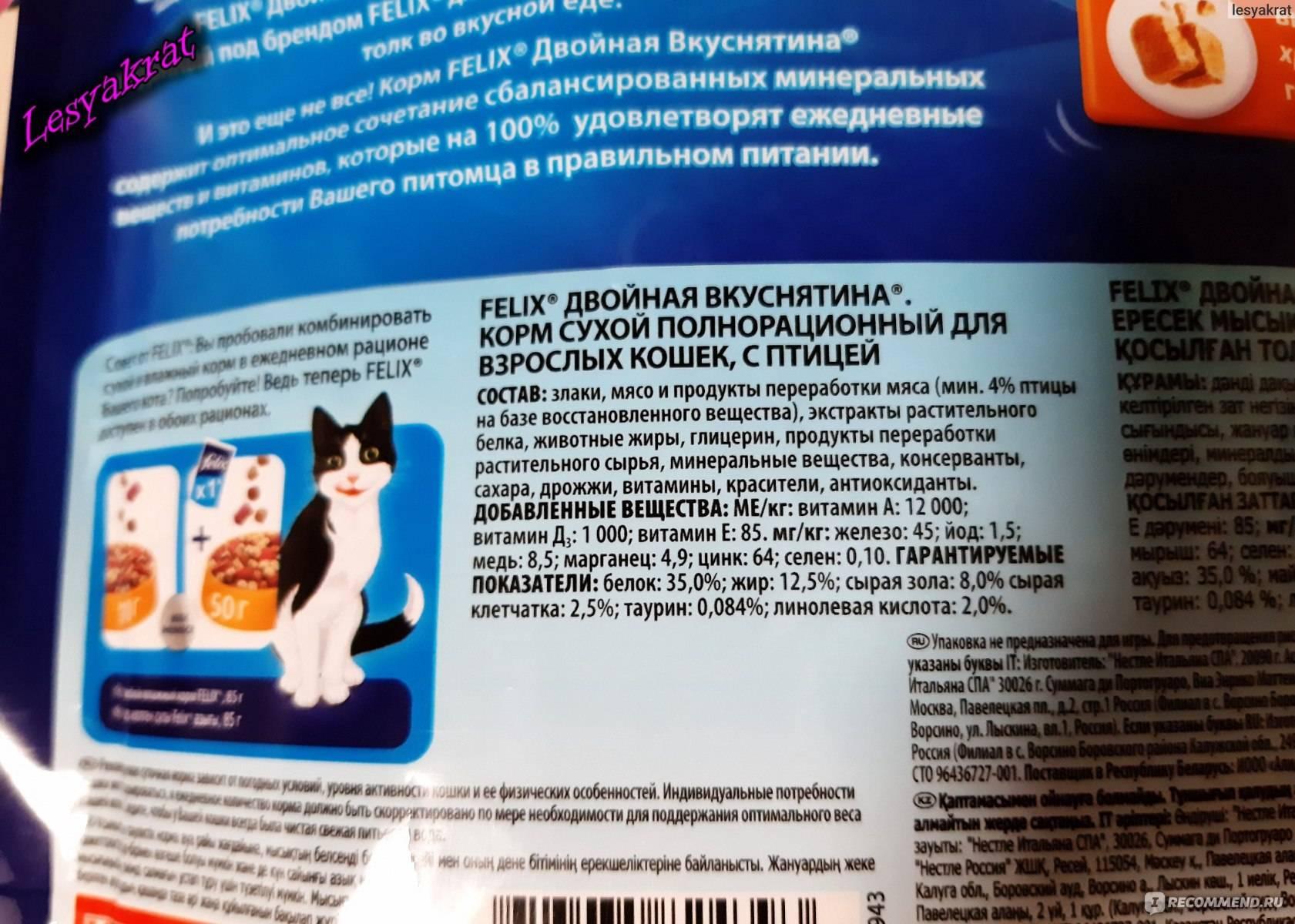Какой корм по мнению ветеринаров самый лучший для кошек - kotiko.ru