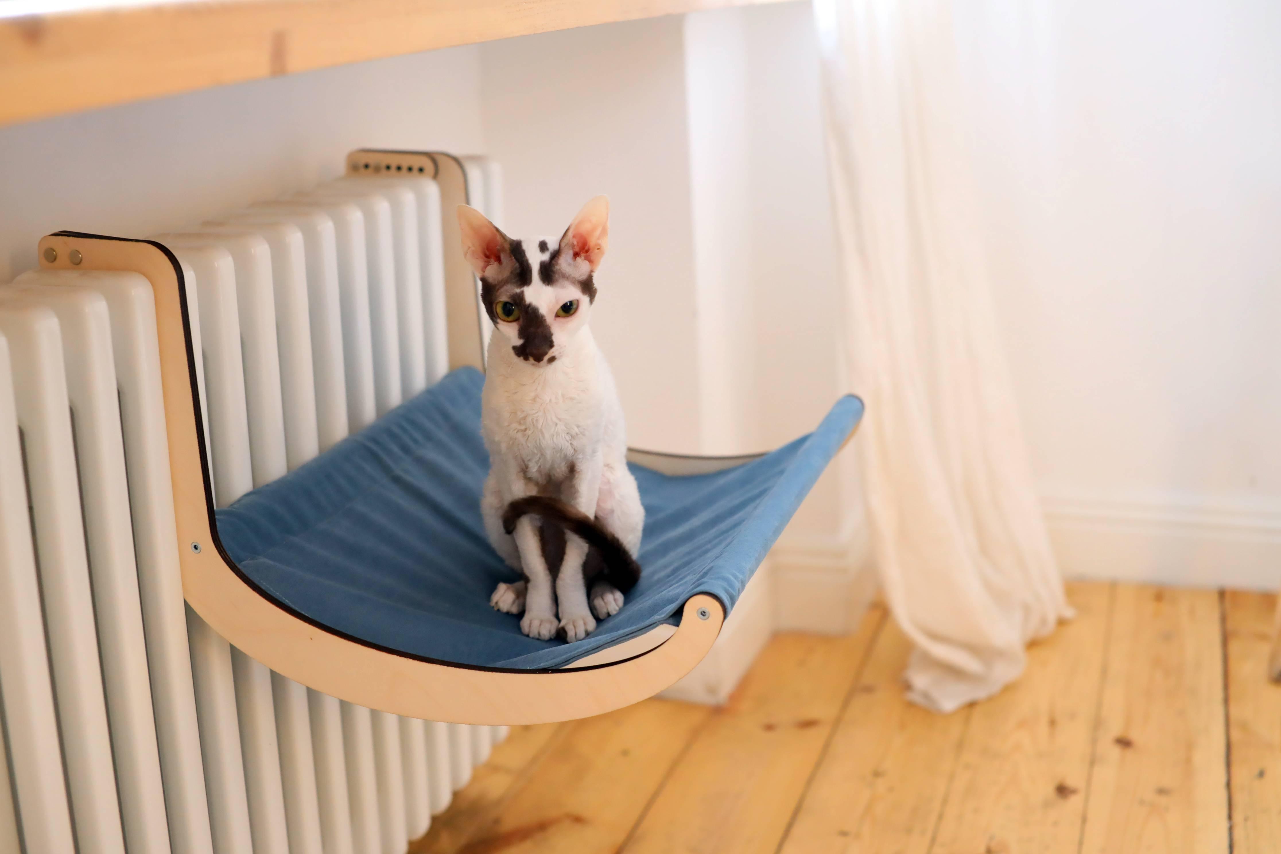 Как сделать лежак для кошки: пошаговая инструкция с фото