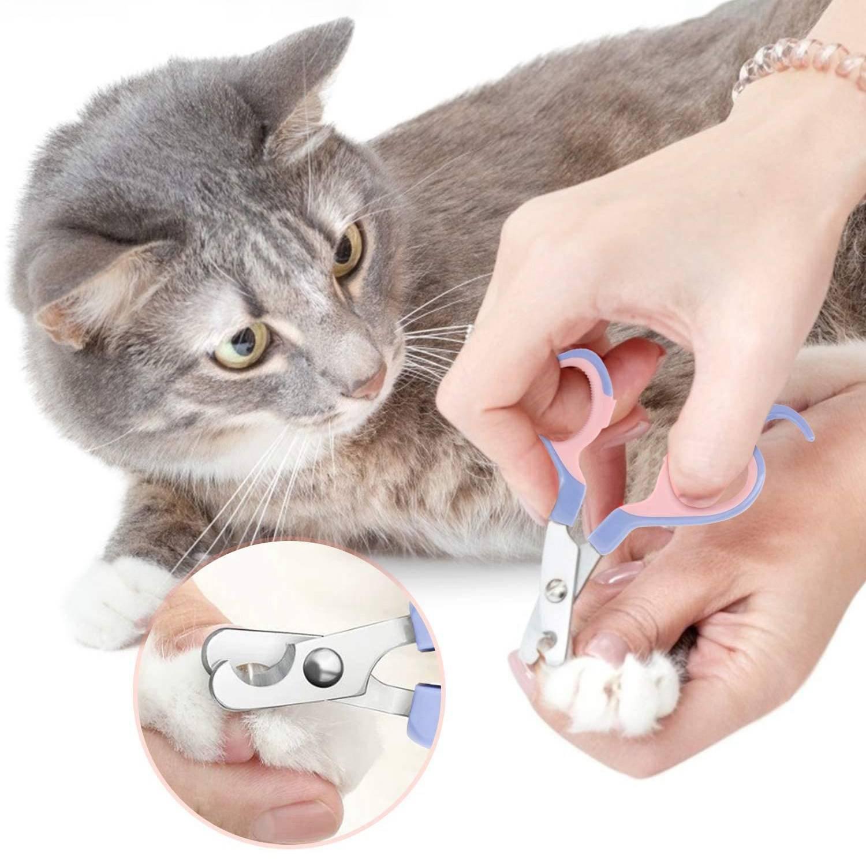 Силиконовые накладки на когти для кошек   отзывы, цена, какие лучше купить