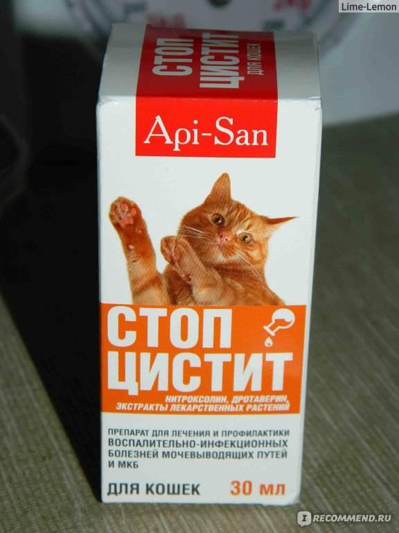 Канефрон для котов