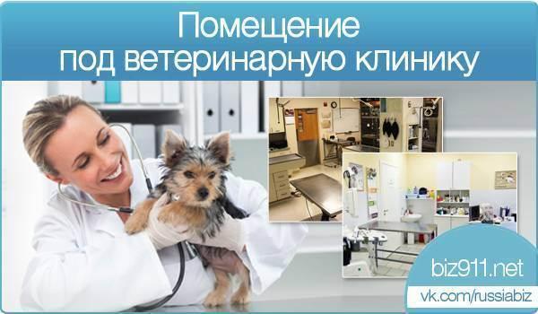 Ветеринары-мошенники