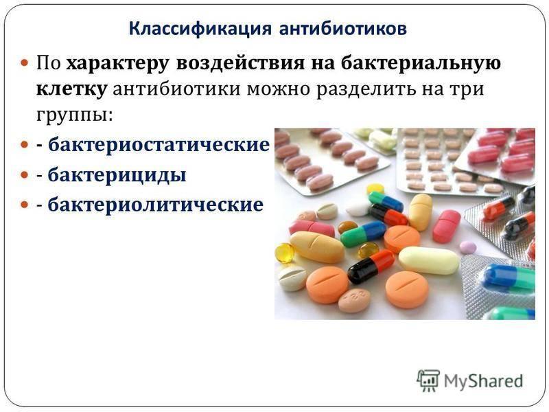 Антибиотики для кошек: виды, применение и назначение