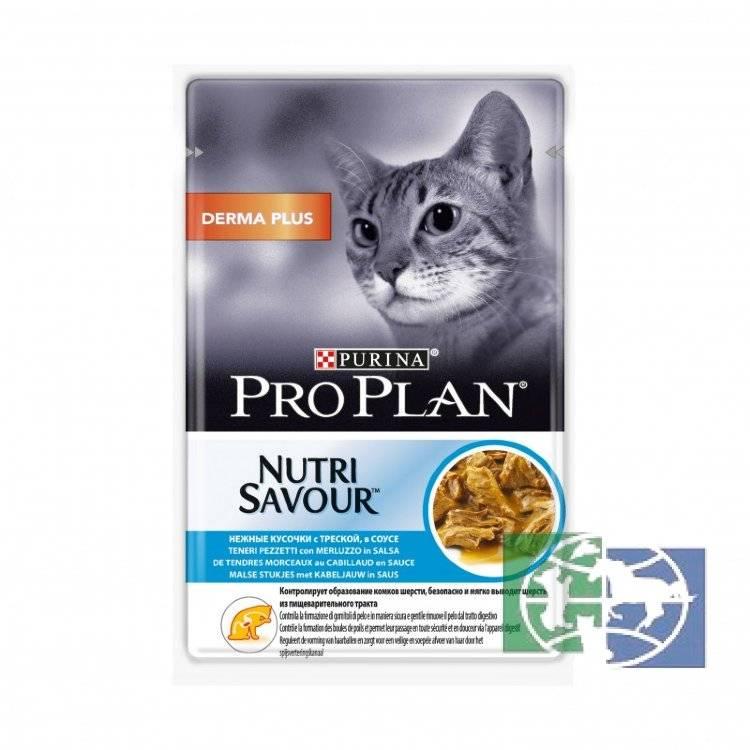 Какой корм лучше: «проплан» или «роял канин»? состав, качество и рекомендации ветеринаров