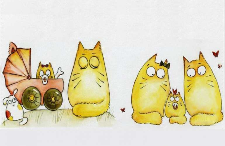 Как определить, кот или кошка?