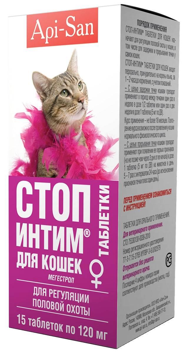 Какие противозачаточные дать кошке