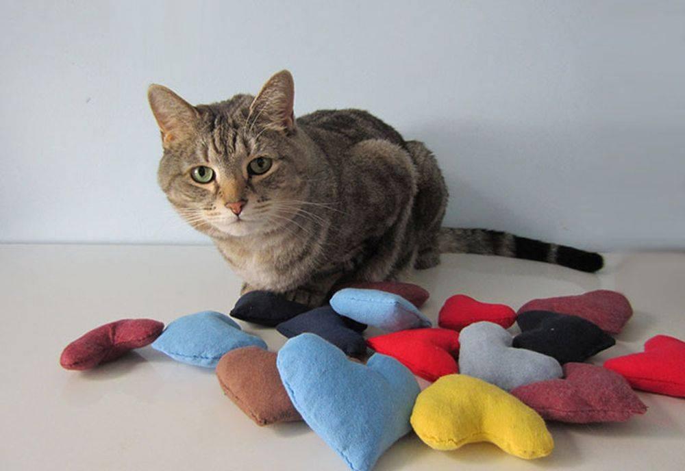 Делаем игрушку для кота своими руками