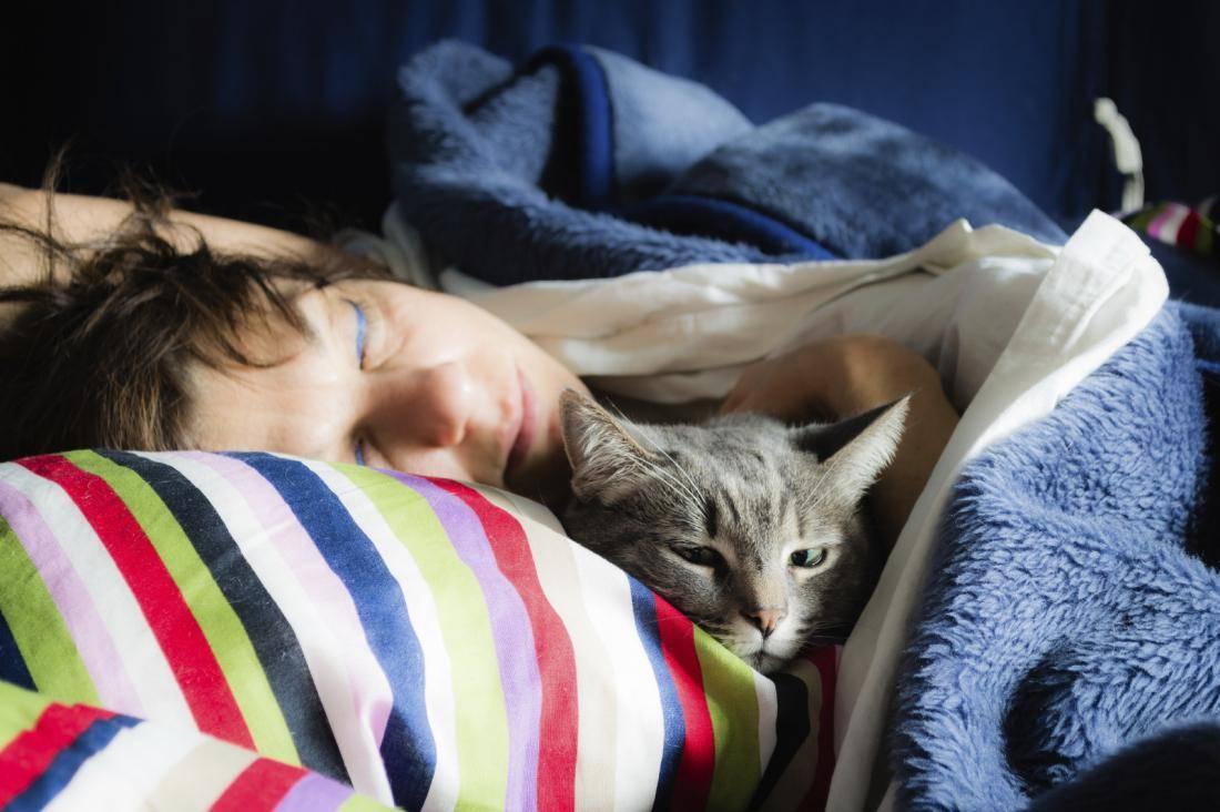 Если кошка спит в вашей постели, что это значит – почему кот ложится на грудную клетку, живот, голову хозяина: народные приметы