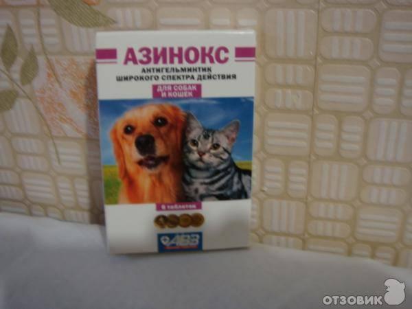 «азинокс плюс» и «азинокс» для кошек и собак: как применять?