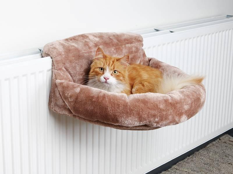 Гамак для кошки: своими руками, фото, мастер классы