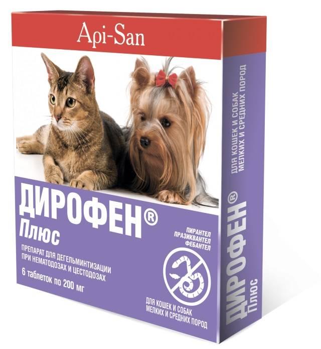 Описание антигельминтных средств для котят, что лучше давать от глистов