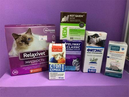 Медикаментозные успокоительные для кошечки |