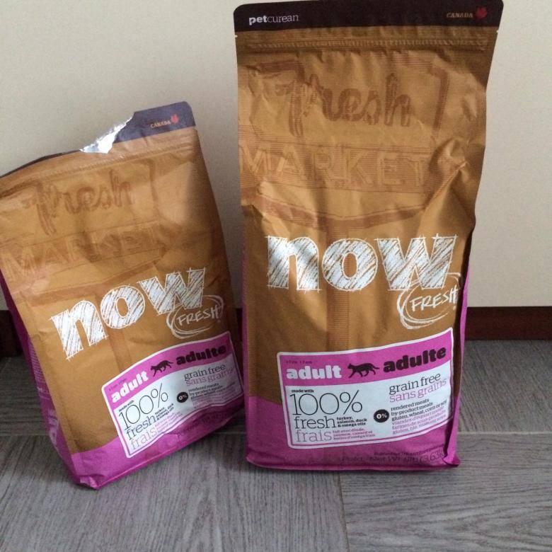 Сухой корм для кошек now fresh grain free senior cat food recipe: обзор, анализ и личный опыт кормления