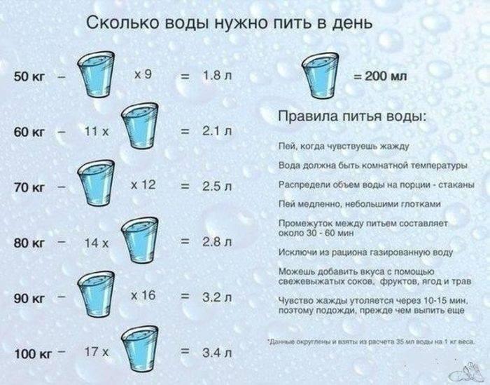 Сколько воды в день нужно кошке