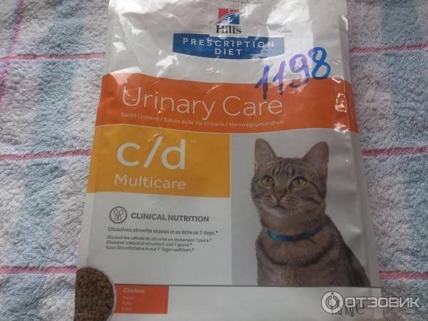 Чем кормить кота при мочекаменной болезни в домашних условиях чем кормить кота при мочекаменной болезни в домашних условиях