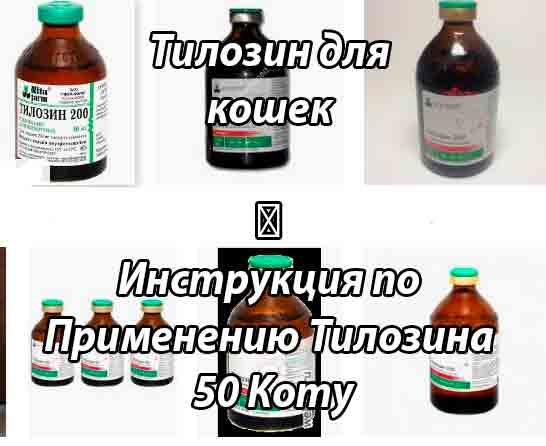 Тилозин для животных │ инструкция по применению тилозина в ветеринарии