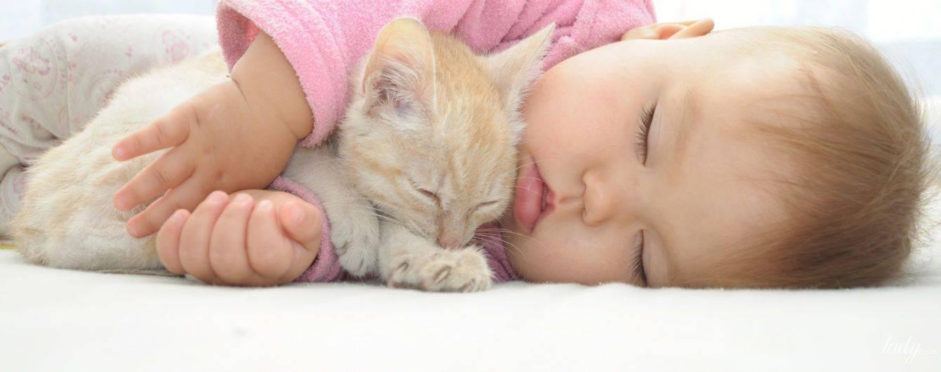 Психолог: если ребенок просит котенка, заведите ему растение