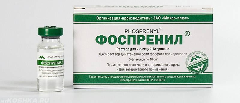 Антивирусное средство фоспренил для кошек. инструкция по применению, отзывы - твой питомец