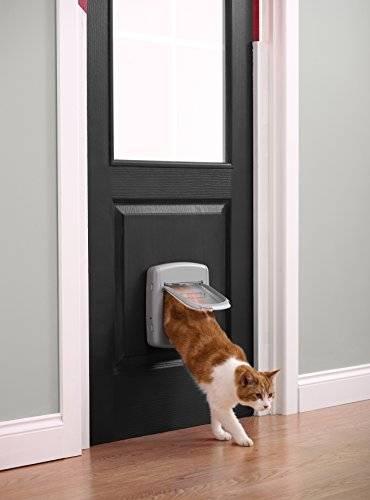 Для самостоятельных кошек: мастерим дверцу для питомца